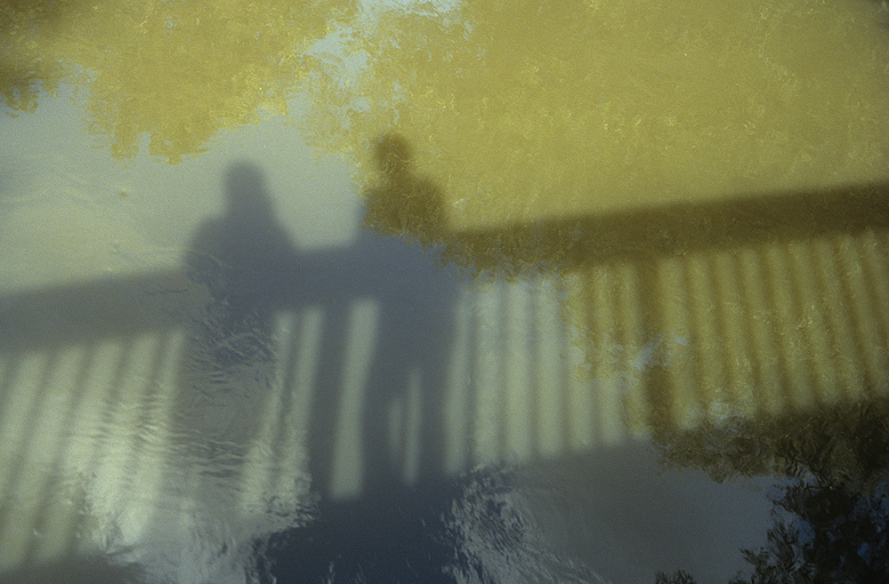 On the Bridge, Dinton Pastures