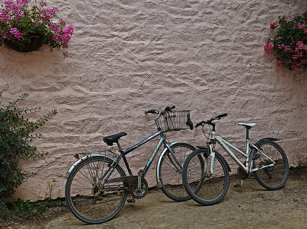 Sark Twin Cycles