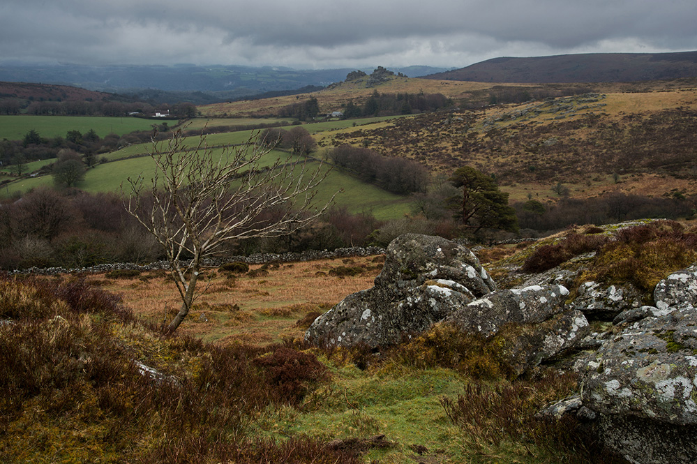View to Hound Tor from Honeybag Tor, Dartmoor