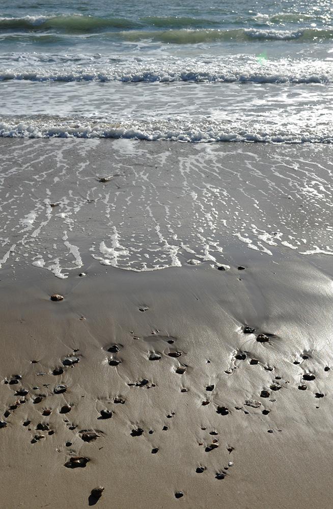 Seashore Light, Sandbanks