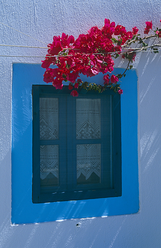 Blue and Pink, Santorini