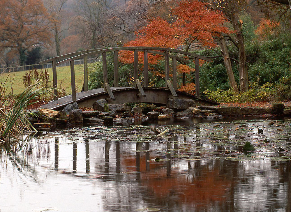 Furzey Gardens New Forest Bridge and Lake in Autumn