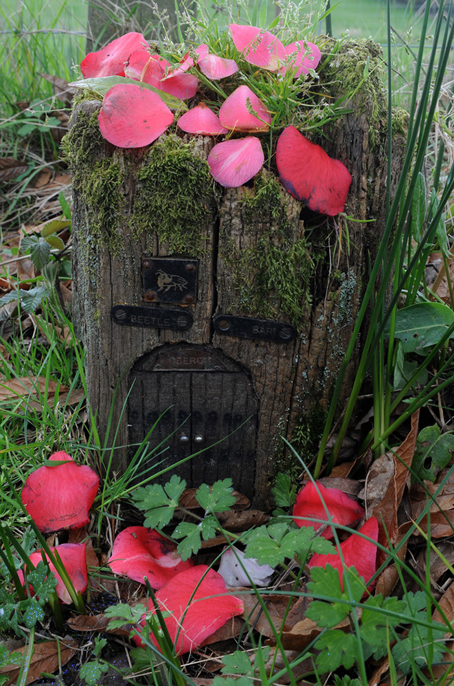 Furzey Gardens New Forest Fairy Door 'Beetle Bar'