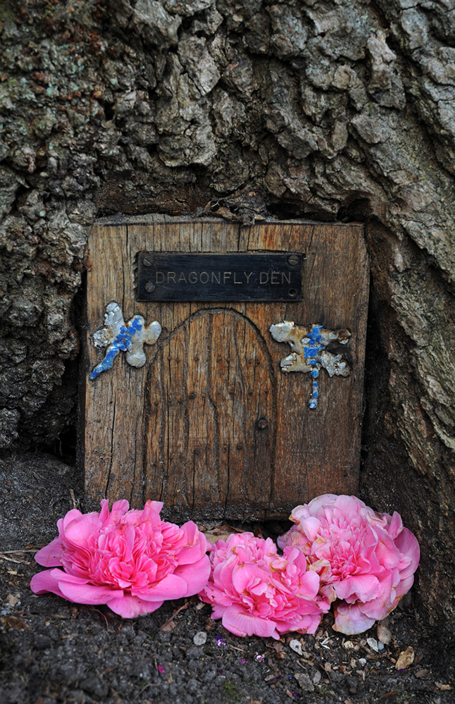 Furzey Gardens New Forest Fairy Door 'Dragonfly Den'