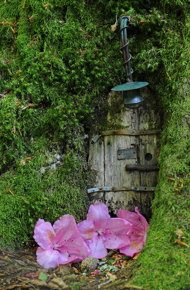 Furzey Gardens New Forest Fairy Door 'Lamp Lair'