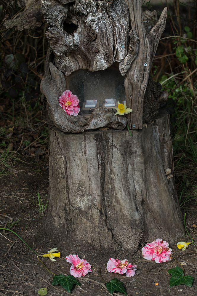 Furzey Gardens New Forest Fairy Door 'The New School'