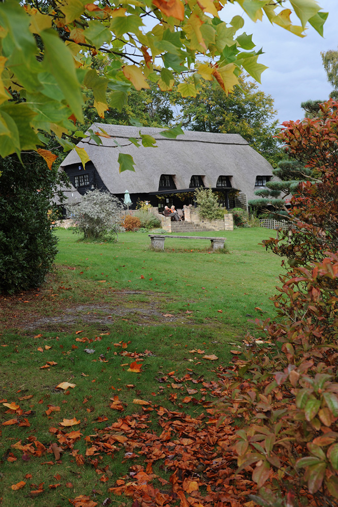 Furzey Gardens New Forest Gallery Tea Room in Autumn