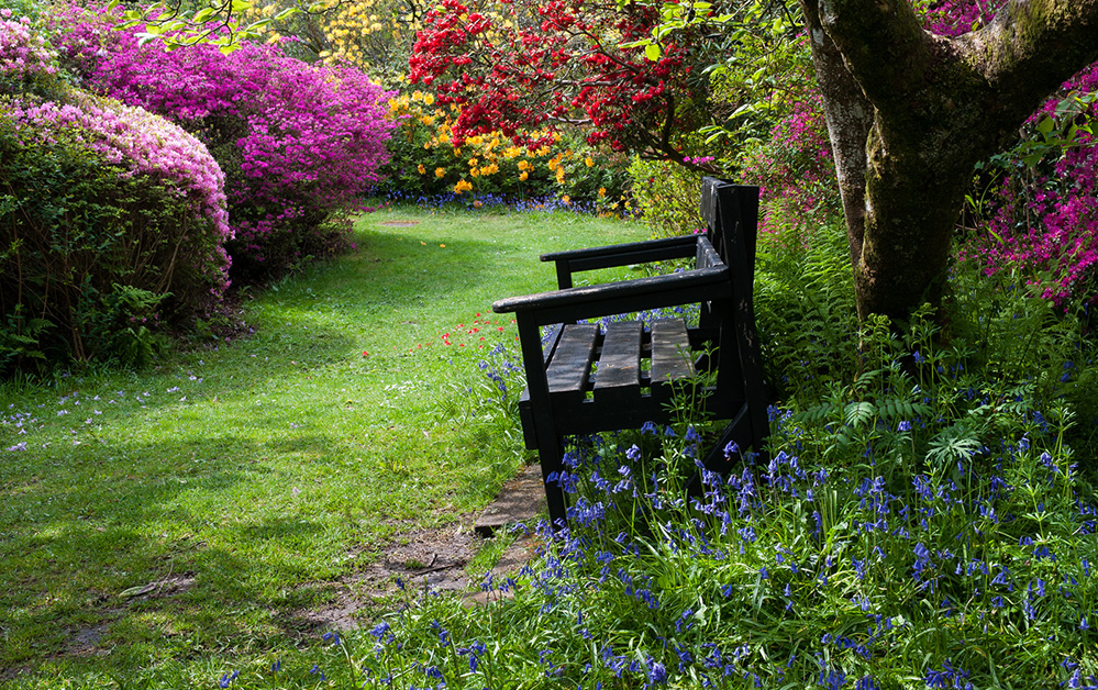 Furzey Gardens New Forest Spring Bench 2