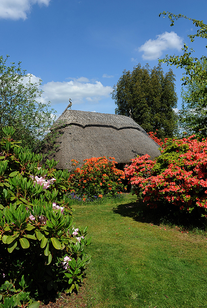 Furzey Gardens New Forest Thatch and Spring Colour 2