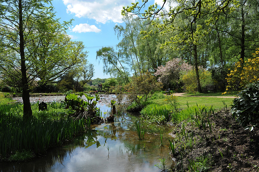 Furzey Gardens New Forest The Lake in Spring 2