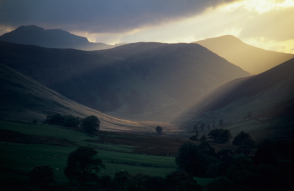 Evening Light, Newlands Valley