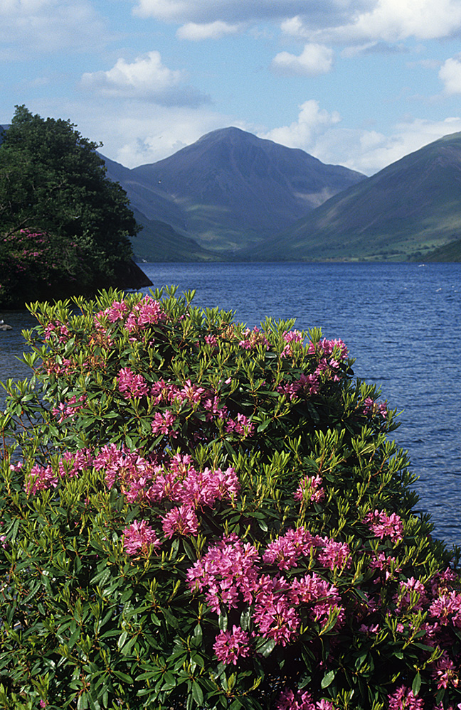 Wastwater and Great Gable, Wasdale
