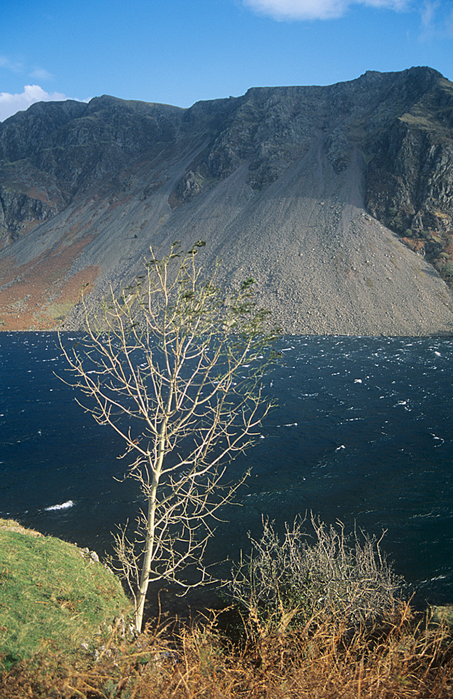 Wastwater and the Screes, Wasdale