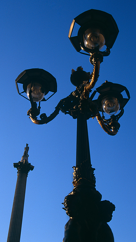 Nelson's Column and Lamppost, Trafalgar Square