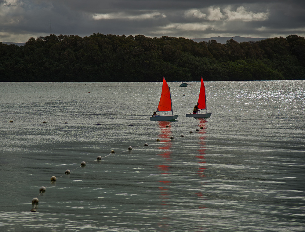 Red Sails in Blue Bay