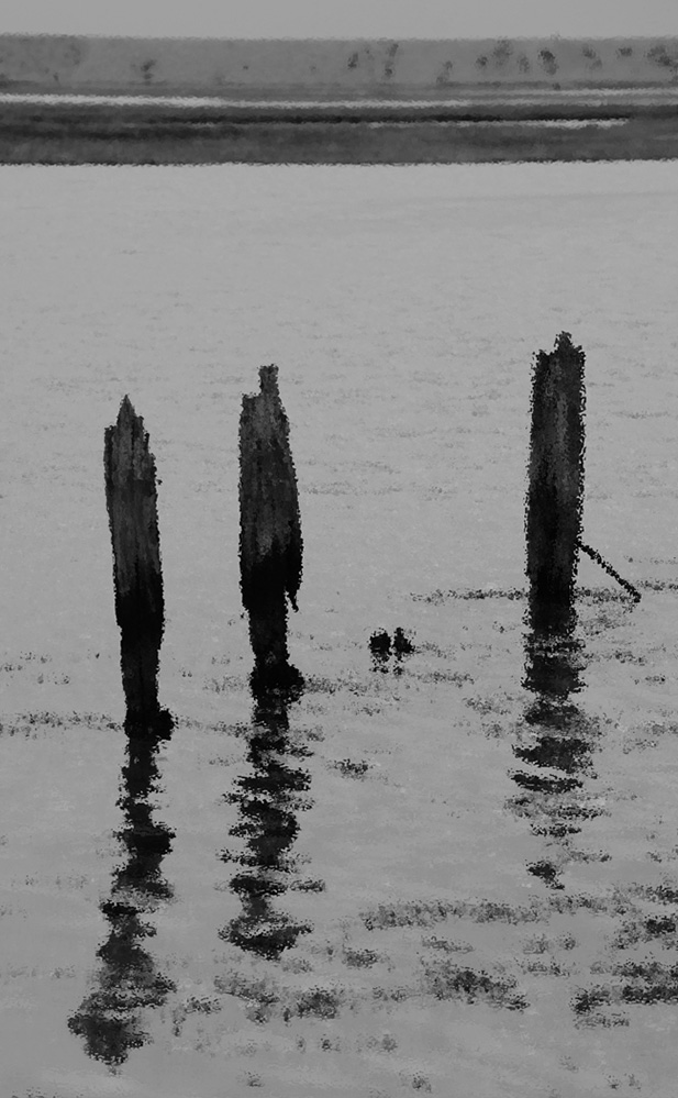 Groyne at Keyhaven, Hampshire