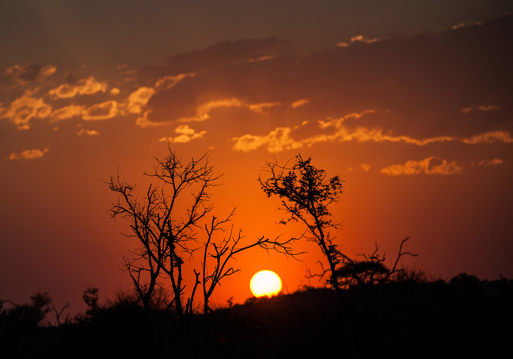 Madikwe Game Reserve Madikwe Sunset