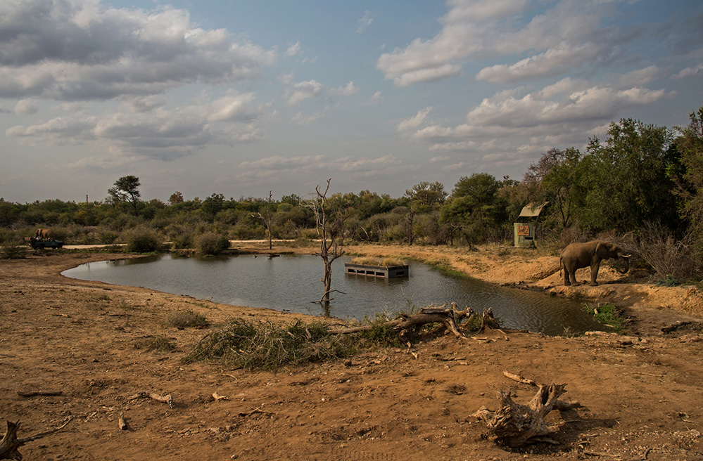 Madikwe Game Reserve View of Water Hole