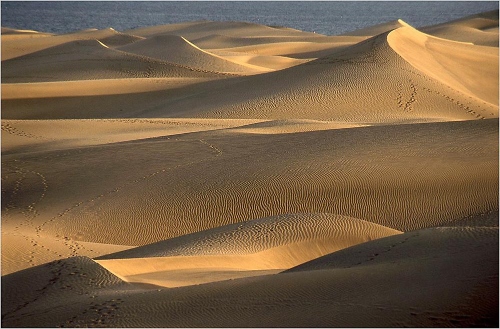 Dune Light, Maspalomas, Gran Canaria