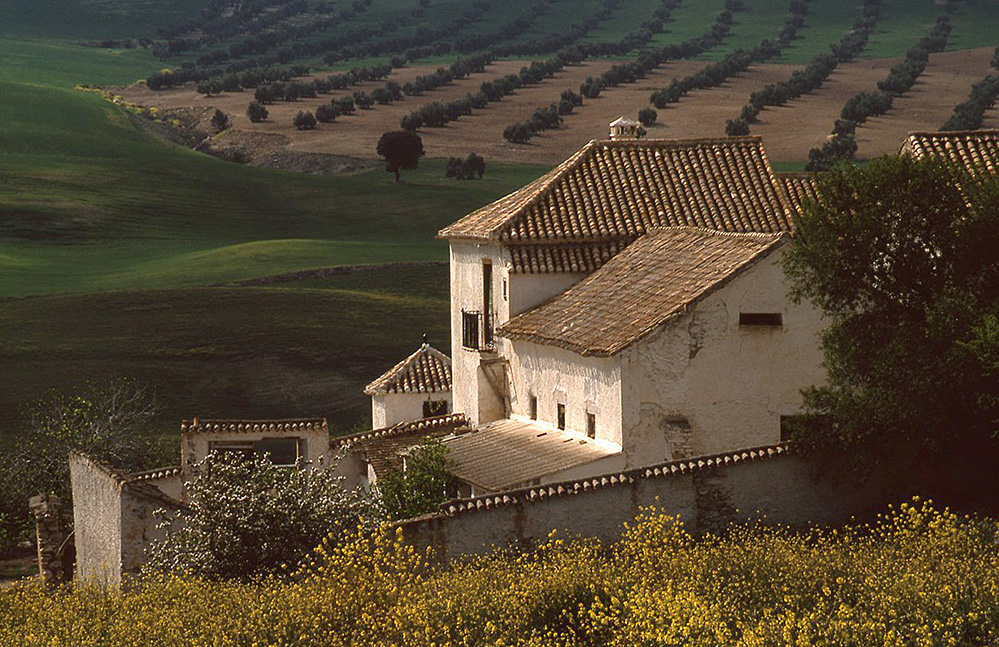 Farmhouse Scene, near Alhama de Granada, Andalucia