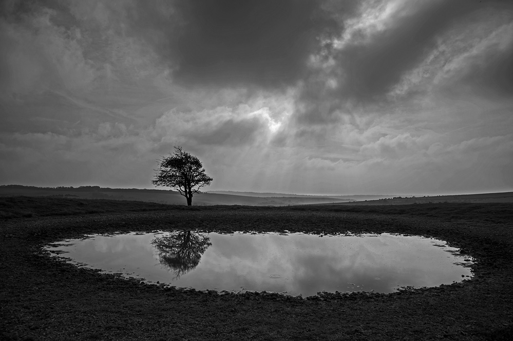 Dew Pond, near Ditchling Beacon, South Downs