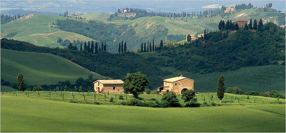 Barns and Ridges, near Asciano